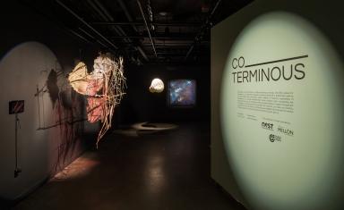 Co-Terminous exhibition