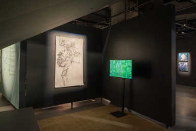 """Selected works from """"Mapping Bodily Connections"""" series (Erika Osborne); Walking the River (Tania Candiani)"""