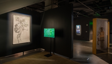 """Walking the River (Tania Candiani); Selected works from """"Mapping Bodily Connections"""" series (Erika Osborne); Selected works from Sphere series (Diane Burko)"""